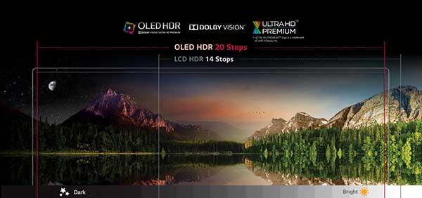 تلویزیون 55 اینچ منحنی ال جی مدل OLED 55C6V